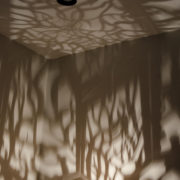 TwistyTreeShadows